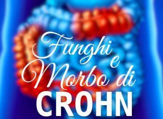 Funghi effetto antiinfiammatorio morbo di Crohn